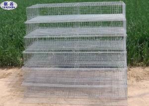China Metal Quail Breeding Cages 15 Years Lifetime with 3 Years Warranty on sale