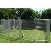 China Dog Cage on sale