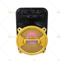 Wireless Active Speakers / Active Passive Speakers with LED Light