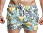 China Fashion beachwear for men boardshort high quality wholesale