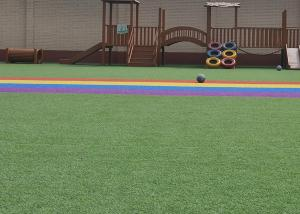 China 1m 2m 16800 Dtex Soft Purple Colored Artificial Turf on sale