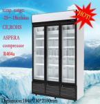 Congelador de cristal comercial 5 de la exhibición de 1260 litros con gradas con la protección del medio ambiente