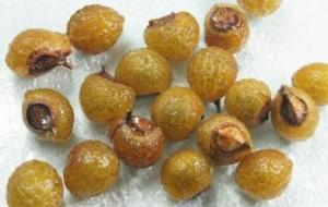 China Soapnut extract, Soapnut Saponins 40%-70% UV, Ingredients for washes, Chinese Manufacturer, Shaanxi Yongyuan Bio on sale