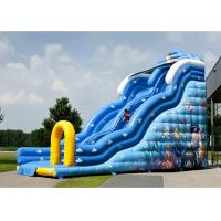 Colorful Inflatable Slide Rental Lovely Carton Bouncer Slide For Sale