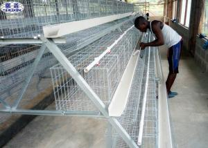 China Chicken Layer Battery Cage Dimensions Steel Wire Material Galvanized Surface on sale