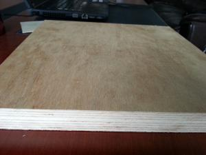 China Xuzhou Chinese Professional Plywood Manufacturer on sale