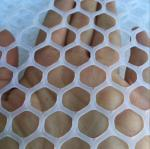 5x5cm,500gr/sqm plastic net, plastic barrier,plastic mat for general use