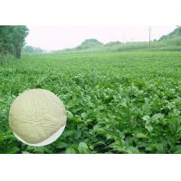 White Color Konjac Glucomannan Powder From Root 60 Mesh Food Ingredients