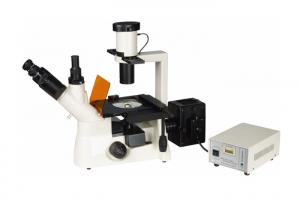 China Compensation Free Trinocular Inverted Fluorescence Microscope For Micro Research on sale