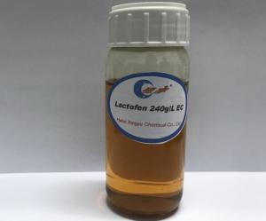 China Lactofen 240g/L EC on sale