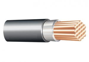 China 1*120 sq. mm 0.6/1 kV XLPE Insulated Cable ( Unarmoured ) ,Copper Conductor Electrical Cable on sale