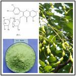 sophora japonica extract rutin,sophora japonica rutin,rutin powder,natural rutin powder