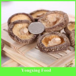 China Bag Packaging and Fruit & Vegetable Type Dried Shiitake Mushroom on sale