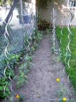 Spiral Plant Stakes,Tomato Stakes,Climbing Plant Support Mesh