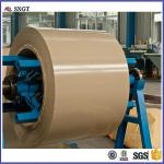 All RAL colors Pre Painted Galvanized Steel Coils China Supplier