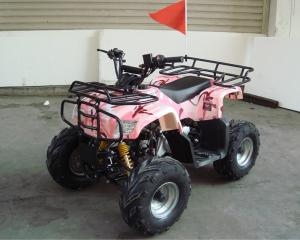 China Single Cylinder 110cc Atv Quad Bike SHINERAY 4 Stroke With Rear Rack on sale