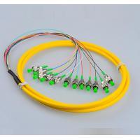 Telecom Standard FC Pigtails FC/APC SM  Fiber Patch Cords 9/125 12Cores  Fiber Pigtails 12 Core Patch Cables