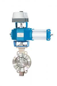 China Triple Offset Butterfly Valve on sale