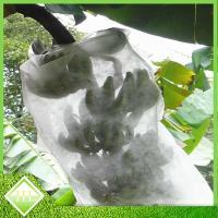 Non Woven Polypropylene Landscape Fabric / Banana Cover Bags Good Air Permeable