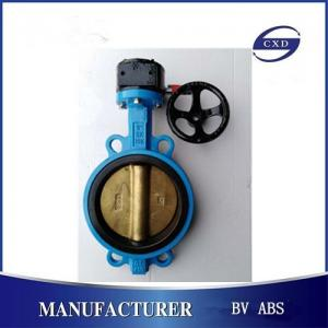 China DIN ANSI JIS butterfly valve-wafer type, lug type, double flange type on sale