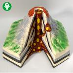 Geological Model Human Body Parts Gift Volcano Demonstration Learning