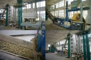 China 20-800 Tpd Food Engineering Projects Rice Bran Oil Manufacturing Plant Turn Key Project on sale