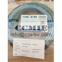 XCMG QY100K Crane Spare Parts Telescoping Cylinder Repair Kit 803500378