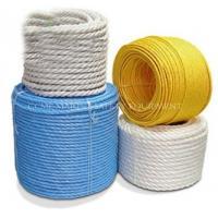 China Marine Mooring polyamide PA / Nylon rope on sale