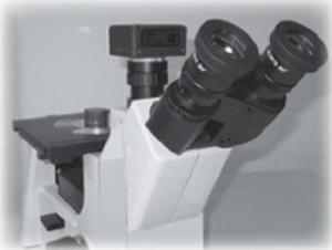 China Inverted Metallographic Microscope SD100M with High-power LED  Lighting, 50% Eyepiece - 50% Veo output on sale