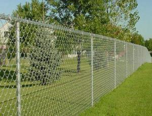 China High Strength Decorative Chain Link Fence , PVC Coated Wire Mesh For Cages on sale