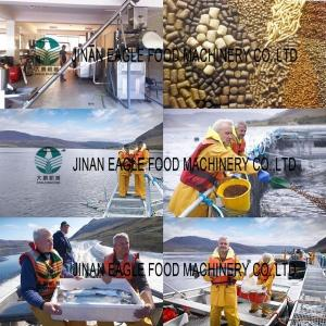 China Floating Fish Feed Processing Machine on sale