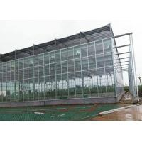 China Commercial / Agricultural Greenhouse , Polycarbonate Sheet Greenhouse on sale