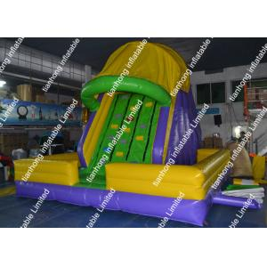 China 0.55mm PVC Inflatable Water Slide Adventure Playground Equipment on sale