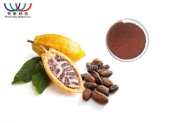 Purepolyphenol Extract Powder Fat Loss Cacao Bean Extract