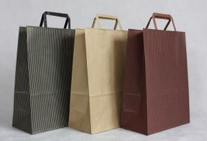 China Customized Kraft Paper Bag with Flat Handle, Carrier Bag Printing Service on sale