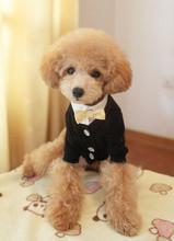 China Fashion 100% Cotton Yellow XL, L, XS Personalised Dog Hoodies on sale
