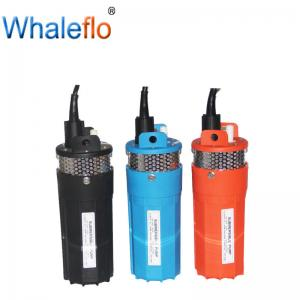 China Whaleflo 3M Cable Pomba Solare Bomba Solar Water Pump 6LPM 360GPH on sale
