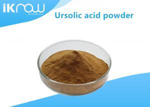 China Anti Inflammatory Supplement Raw Materials Rosemary Extract Ursolic Acid CAS 77-52-1 on sale