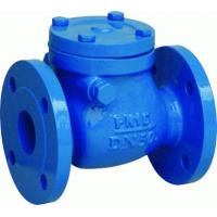 Cast Ductile Iron FF BC Swing Check Valve with 250 PSI Working Pressure ISO 9001 / API 6D