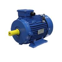 China IEC F Class MS132S-4 3KW 4HP 3 Phase Induction Motor on sale