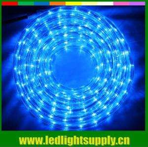 China Led flexible led strip 1/2'' 2 wire rope duralights with low volt 24/12v on sale
