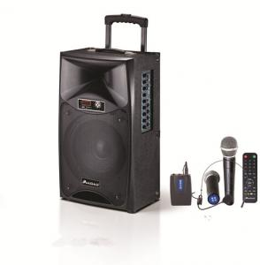 China Single 12 Inch Rechargeable Portable Trolley Speaker / Bluetooth Powered Pa Speakers on sale