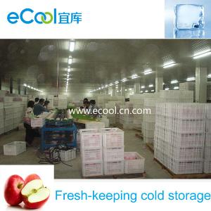 China Apple Cold Storage with Processing Area and Air Control Rooms on sale
