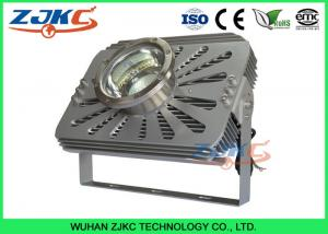 China 300W Marine LED Flood Lights Salmom Growth Lamp For Indoor Fishing Farm on sale