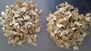 China Fresh Ginger,Dry Ginger,Zingiber officinale Roscoe on sale