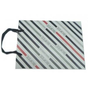 China Customized Delicate design Wrapping Paper Gift Bags Printed Paper Carrier Bags on sale