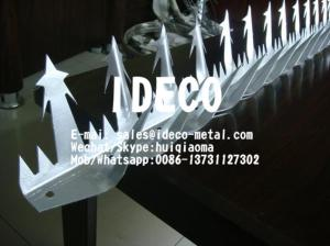 China Wall Spikes,Security Spikes,Fence Wall Spike,Stainless Steel Wall Spike on sale