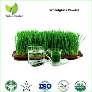 China wheatgrass powder,organic wheatgrass powder,wheat grass powder,wheatgrass extract on sale