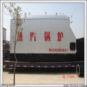 China CE Certificate approval coal fired steam boiler biomass steam boiler 1-30ton/hr steam capacity on sale