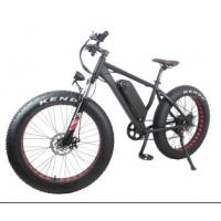 Geared Electric Fat Bike 48v 750w With Sinewave System , High Speed 35-40km/h